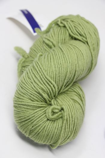 Malabrigo worsted merino in Moss 505