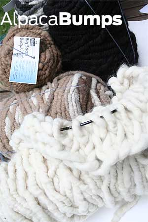 ALPACA wool bumps