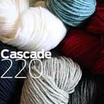 Cascade 220 worsted