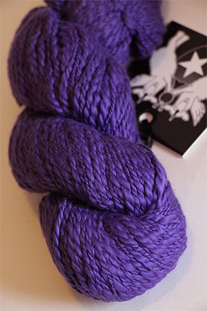 Inca Eco Organic Cotton in 632 PURPLISCIOUS Joseph Galler at Fabulous Yarn