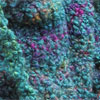 Wool Boucle Yarn Teal