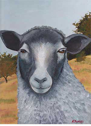 Sheep Paintings by Rochelle Redfield - Gotland - A Unique Knitting Gift