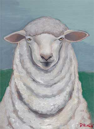 Sheep Portraits - Columbia Sheep