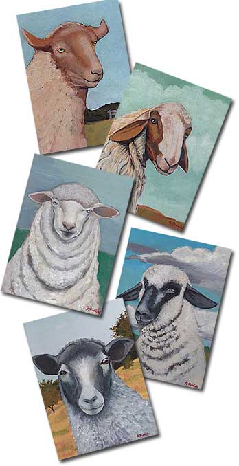 Sheep Gift Cards