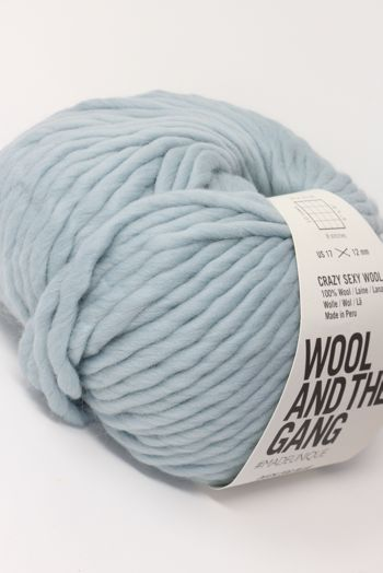 Wool & The Gang Crazy Sexy Wool in Duck Egg Blue